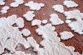 Free Salt, Salinas - Sal Island, Cape Verde Stock Images - 8261044