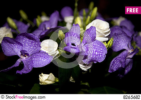 Free Bouquet Of Roses And Irises Stock Photography - 8265682