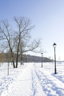 Free Winter Park Royalty Free Stock Photos - 8260178