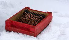 Free Winter War Moment Stock Photos - 8261633