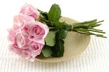 Free Rose Stock Photo - 8263680