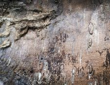 Free Beautiful Old Wooden Texture Royalty Free Stock Photography - 8263797