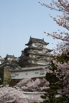 Free Castle Among Cherry Blossoms Stock Photos - 8265373