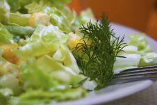 Free Lettuce Stock Photo - 8265420