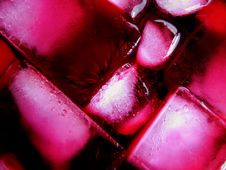 Pink Ice Cubes Stock Images