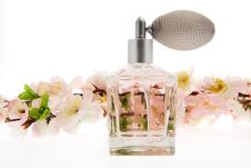 Free Perfume, Pink Bottle With Cherry Blossoms Royalty Free Stock Photography - 8267627