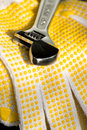 Free Adjustable Wrench On Gloves Royalty Free Stock Image - 8277196