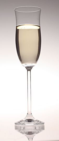 Free Glass Of Champagne Stock Image - 8270371