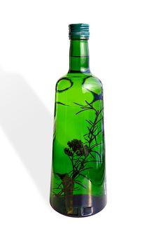 Free Green Bottle Stock Image - 8270541