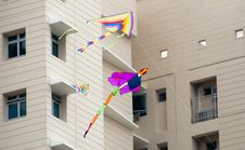 Free Flying Dragonfly Kite In Residence Stock Photography - 8271022