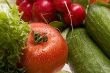 Free Fresh, Wet Vegetables. Royalty Free Stock Photo - 8271255