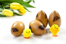 Free Easter Eggs Stock Photo - 8271730