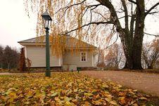 Free Autumn Stock Photo - 8271970