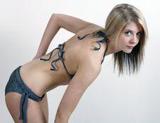 Free Girl In Bikini Stock Images - 8272514