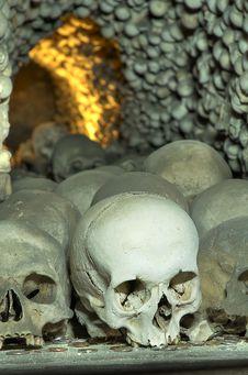 Free Skulls Royalty Free Stock Photos - 8273118