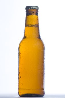 Free Fresh Cold And Tasty Beer Stock Images - 8273614
