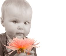 Free Baby With Flower Stock Photography - 8274152