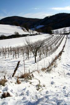 Free Mountain Winter Scene Royalty Free Stock Photography - 8274877