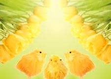 Free Easter Background Royalty Free Stock Image - 8275776