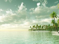 Free Tropical Island Royalty Free Stock Photography - 8276937