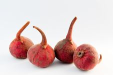 Free Four Figs In A Row Royalty Free Stock Images - 8278069