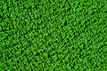 Free Green Texture Royalty Free Stock Image - 8288446