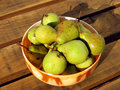 Free Pears In The Saucer Royalty Free Stock Photography - 8289437