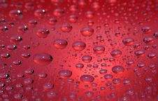 Free Red Fly Drops Stock Photos - 8281703