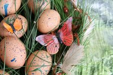 Free Easter Eggs Royalty Free Stock Photos - 8282818
