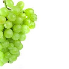 Free Green Grapes Stock Photo - 8282950