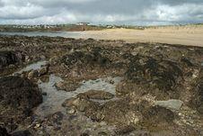 Free Devon Coast Royalty Free Stock Photo - 8283305