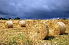 Free Hay-field 01 Royalty Free Stock Images - 8284589