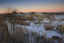 Free Snowy Sand Dunes At Sunrise Stock Image - 8285871