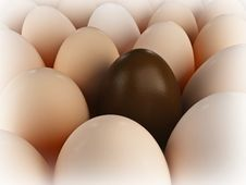Free Eggs Stock Photo - 8286920