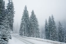 Free Empty Snowy Mountain Road Stock Images - 8287364
