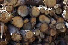 Free Stack Of Firewood Stock Images - 8287634