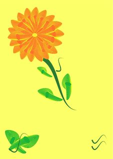 Free Orange Flower Royalty Free Stock Photography - 8289297