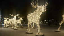 Free Elks Made Of Lights Royalty Free Stock Photo - 82893515