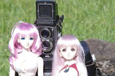 Free Twin Lens Reflex Camera And Two Dolls Stock Image - 82896871