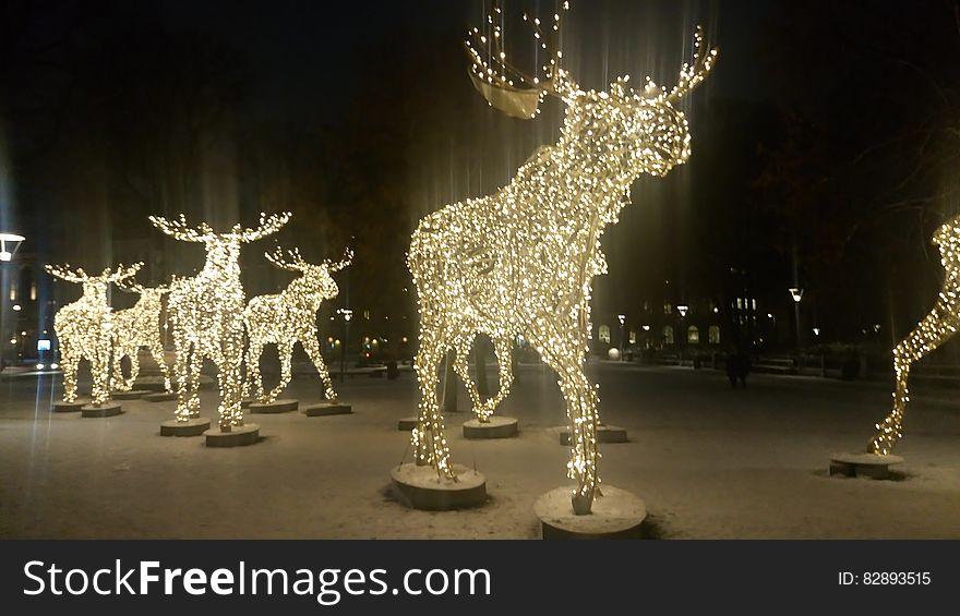 Elks made of lights