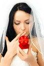 Free Surprised Bride Royalty Free Stock Photos - 8294248