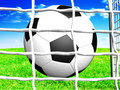 Free Soccer Ball Stock Photography - 8298132