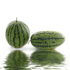 Free Watermelon Stock Image - 8292381