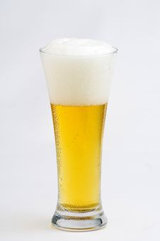 Free Fresh Cold And Tasty Beer Stock Photography - 8292682