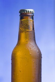 Free Fresh Cold And Tasty Beer Royalty Free Stock Photo - 8292885