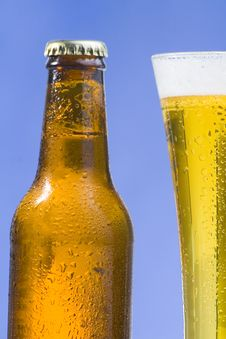 Free Fresh Cold And Tasty Beer Royalty Free Stock Image - 8292916