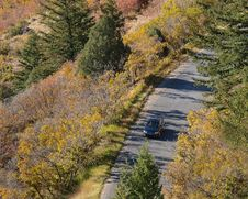 Free Fall Drive Royalty Free Stock Photo - 8293675