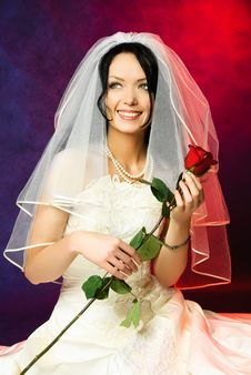 Free Dreamy Bride With A Rose Stock Photos - 8294333