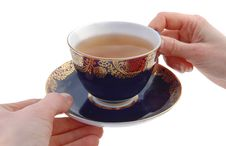 Free Cup And Saucer Royalty Free Stock Image - 8295646