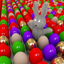 Free Easter Bunnies Is Among The Eggs Royalty Free Stock Images - 8297169